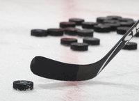 eishockey del 2 live