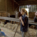 Bilder zur Sendung: Bauer sucht Hof
