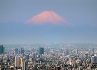 Japan von oben