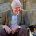 David Attenboroughs Wunder der Natur