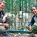 Pia und die wilden Tiere