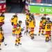 Eishockey Live - Länderspiel