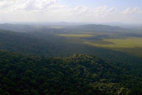 Bild 1 von 4: Guyana - Frankreichs grünes Eldorado