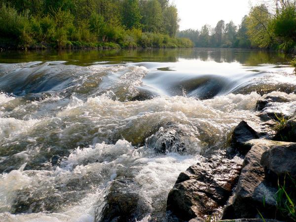 Bild 1 von 5: Wo einst hohe Gebirge aus den Urmeeren emporragten und heute eine sanfte, hügelige Landschaft das nördliche Waldviertel prägen, entspringt ein Fluss, der bis zu seiner Mündung in die Donau eine faszinierende Vielfalt an geologischen Gegebenheiten durchfließt: der Kamp. Es ist die Lebensader für eine vielfältige Flora und Fauna, aber auch für die Menschen, die hier im Lauf der Zeit eine spezifische Lebenskultur entwickelt haben. Der Film verfolgt den Fluss im Wandel der Jahreszeiten - eine spannende Reise durch ein faszinierendes Tal und seine Geschichte.