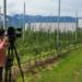 Bilder zur Sendung: Sch�ne neue Essenswelt