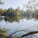 Abenteuer Erde: Im Dschungel der Rheinauen