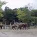 Von Tieren und Menschen - Tiergarten Schönbrunn