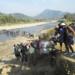Bilder zur Sendung: Im Dschungel von Myanmar