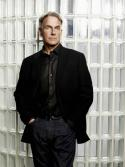 Mark Harmon in: Navy CIS