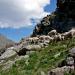 Bilder zur Sendung: Die Wiege des Alpinismus - Vom Ankogel auf die Berge der Welt