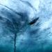 Bilder zur Sendung: Unter Wasser - Katastrophen aus dem Meer 1