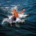 Bilder zur Sendung: Flippers neue Abenteuer