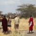 Tansania - Vom Kilimandscharo in die Serengeti