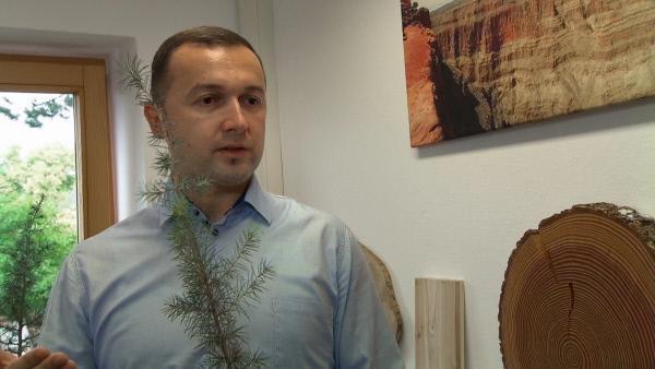 Bild 1 von 10: Dr. Muhidin Seho vom Bayerischen Amt für forstliche Saat- und Pflanzenzucht in Teisendorf im Berchtesgadener Land.