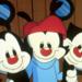 Bilder zur Sendung: Animaniacs