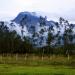 Bilder zur Sendung: Die Anden am Äquator