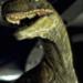 Bilder zur Sendung: Jurassic Park