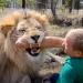 Die 50 niedlichsten Tiergeschichten