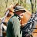 Ackern mit Pferden