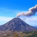 Wildes Leben am Vulkan
