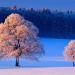 Winterwelten - Weiße Pracht voller Gegensätze