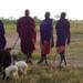 Bilder zur Sendung: Grenzenlos: Die Kirche bei den Massai