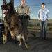 Louis Theroux: Los Angeles - Stadt der Hunde