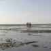 Sylt - eine Insel, ein Mythos