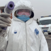 Corona - Vom Virus zur globalen Bedrohung