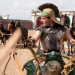 Brot und Spiele - Wagenrennen im alten Rom
