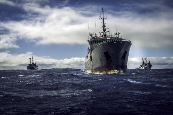 Die Ozean-Krieger