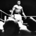 Bilder zur Sendung: Ein deutscher Boxer