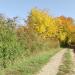 Geplante Wildnis - Unterwegs mit dem Wildlebensraumberater