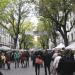 Der Weimarer Zwiebelmarkt