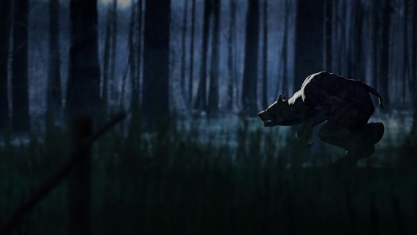 Bild 1 von 2: Der Werwolf ist in der Mythologie ein Mensch, der sich in einen Wolf verwandeln kann. In dieser Gestalt verfügt er über besondere Kräfte, oder er ist ein blutrünstiges Monster, das selbst Menschen verspeist.
