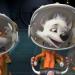 Bilder zur Sendung: Space Dogs