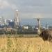 Kenia: Kein Platz f?r wilde Tiere