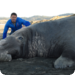 Bilder zur Sendung: Giganten der Tierwelt