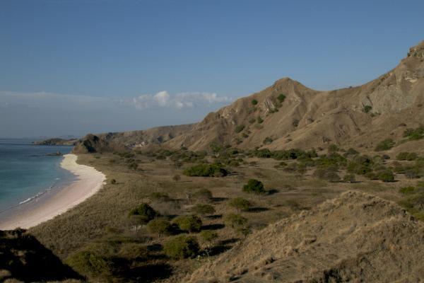 Bild 1 von 2: Komodo ist eine der kleinen Sundainseln im Süden des indonesischen Archipels.