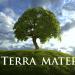Terra Mater - Tierisch Wohnen