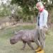 Bilder zur Sendung: Paula und die wilden Tiere