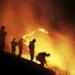 Bilder zur Sendung: Flammen im Paradies