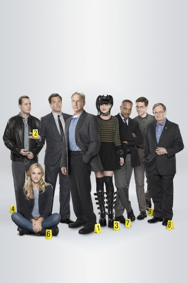 Bild 1 von 12: (13. Staffel) - Die Mitglieder des Naval Criminal Investigation Service: Abby (Pauley Perrette, 4.v.r.), Ducky (David McCallum, r.), Gibbs (Mark Harmon, 4.v.l.), Leon (Rocky Carroll, 3.v.r.), DiNozzo (Michael Weatherly, 3.v.l.), McGee (Sean Murray, l.), Jimmy (Brian Dietzen, 2.v.r.) und Ellie (Emily Wickersham, 2.v.l.) ...