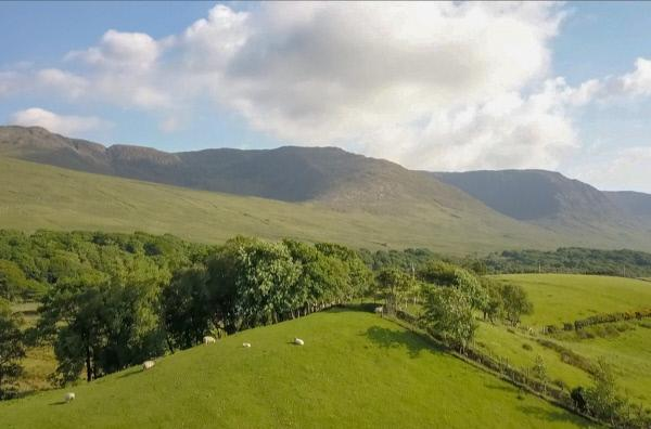 Bild 1 von 4: Irland oder Die Love Story von Michel Houellebecq