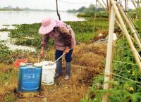China in Dosen - Billige Lebensmittel aus Fernost