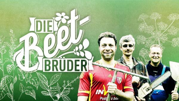 """Bild 1 von 8: Das Logo zur Sendung """"Die Beet-Brüder""""."""
