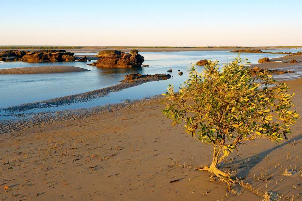 Bild 1 von 6: Landschaft an der Küste der westaustralischen Region Kimberley.