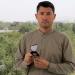 Die Taliban in Kabul