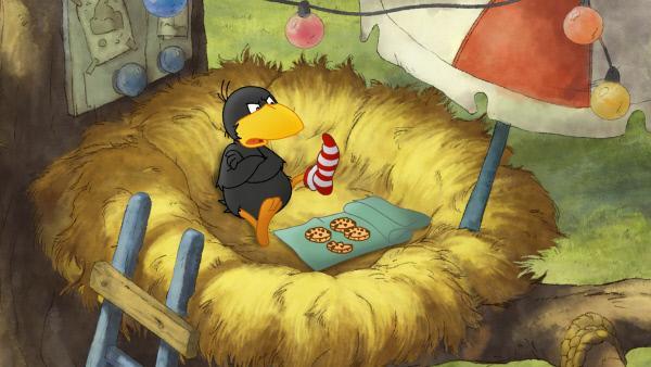 Bild 1 von 4: Socke hat Streit mit seiner Ringelsocke.