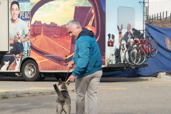 Bild 1 von 1: Auf seinem großen Roadtrip quer durch die USA hilft Cesar Millan Hundehaltern mit schwierigen Vierbeinern ...